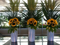 sunflowerslobby